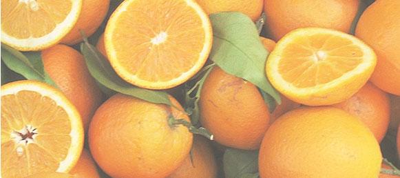 Citrus Inquiries