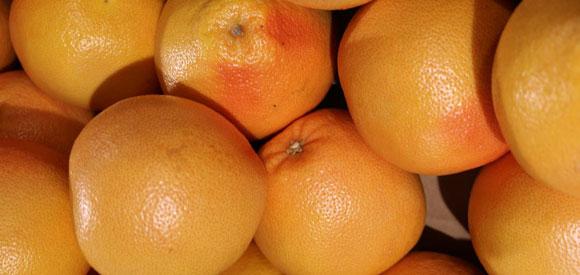 Hybrid Grapefruit